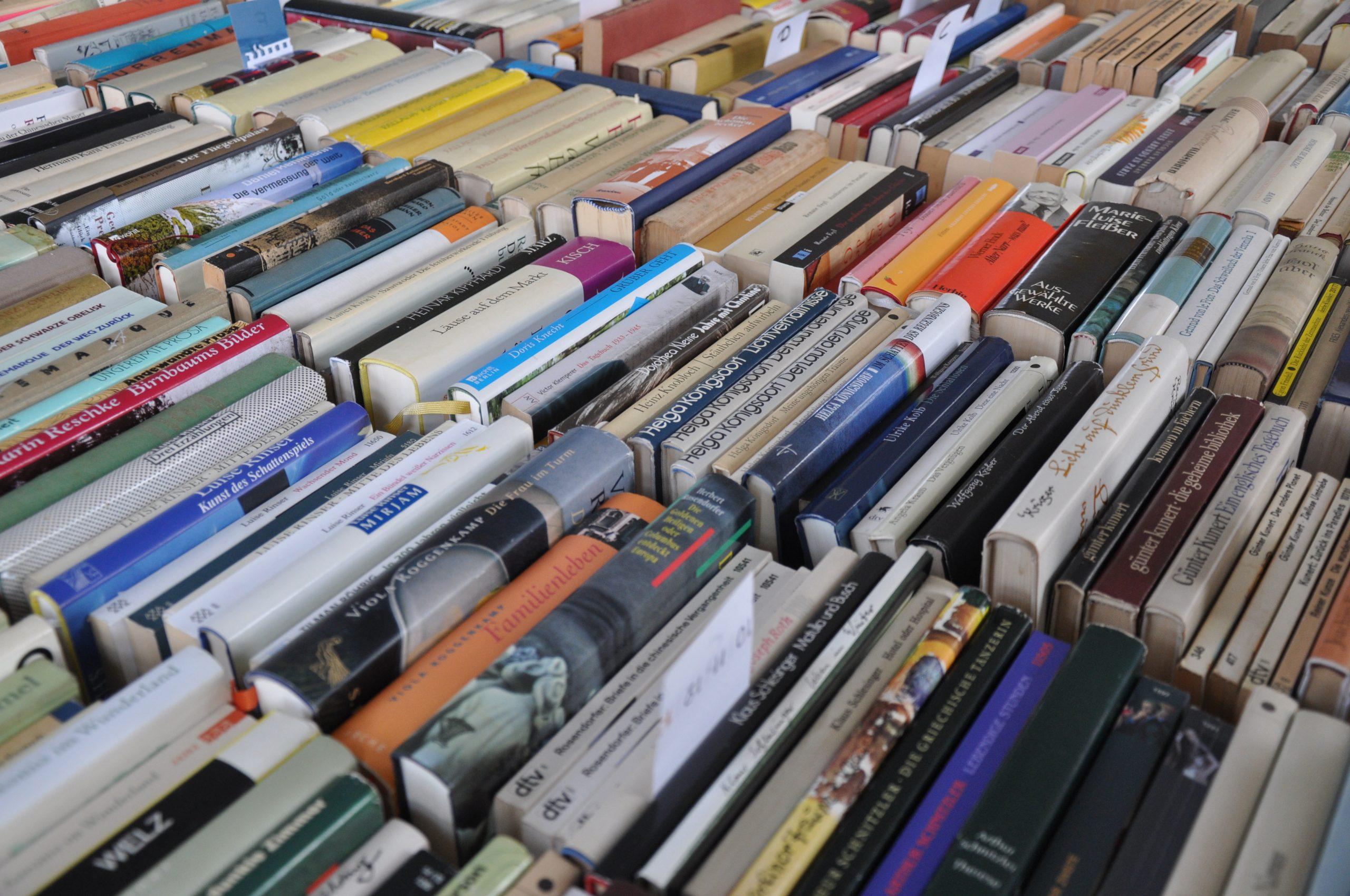 4. Klotzscher Bücherbasar und Literaturwoche